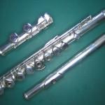 Flûte remontée - Le Salon de Musique à Strasbours